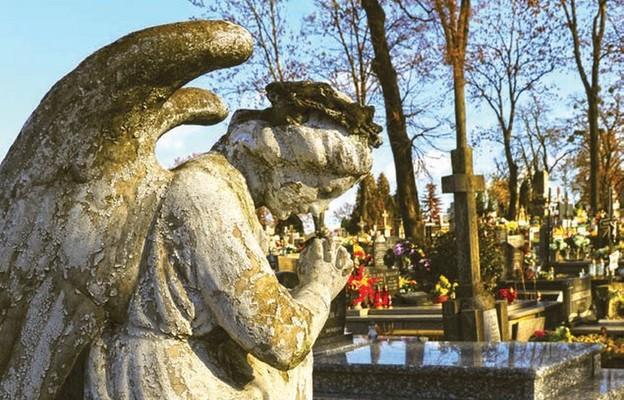Cmentarne lekcje i katechezy