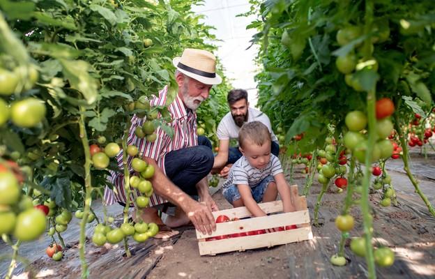 Solidarni z rolnikami