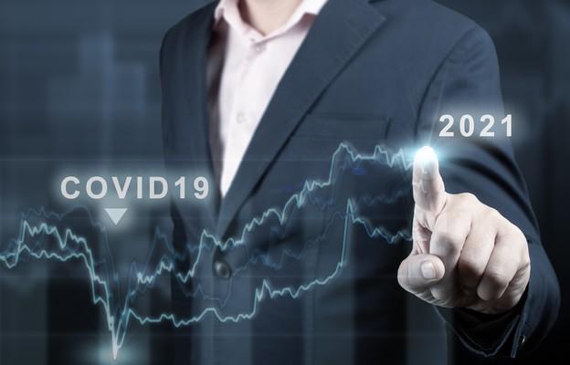 Rok gospodarczych niespodzianek