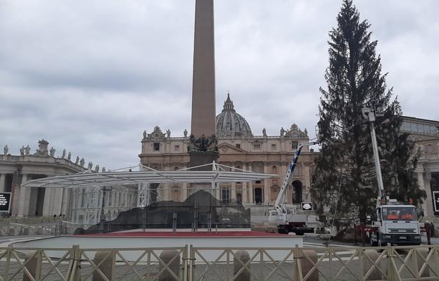 Watykan: Rozebrano kontrowersyjną szopkę