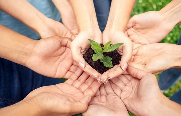Coraz więcej zielonych inicjatyw