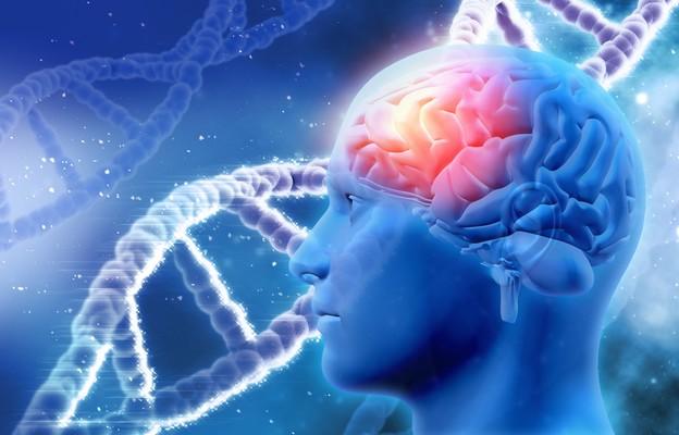 Ciężki przebieg COVID może wynikać z zakażenia mózgu przez SARS-CoV-2