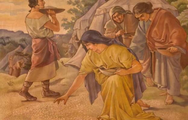 Kto przychodzi do Chrystusa, nie będzie łaknął
