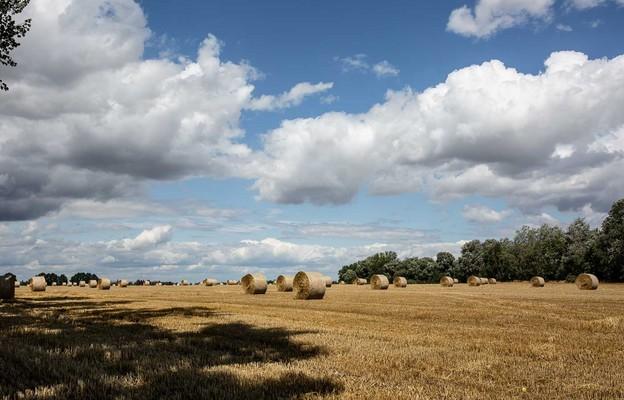 Bp Solarczyk wyraził rolnikom wdzięczność za ich pracę i poświęcenie